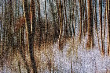 Gouden winter van Michael Nägele