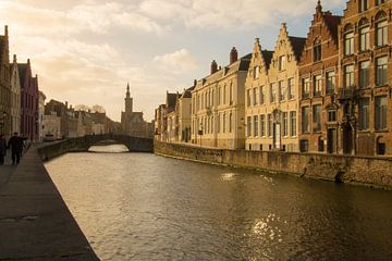 Spinolarei, Brugge van Martijn Mureau