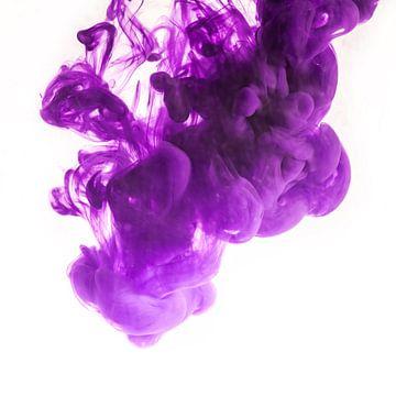purple sur Silvio Schoisswohl