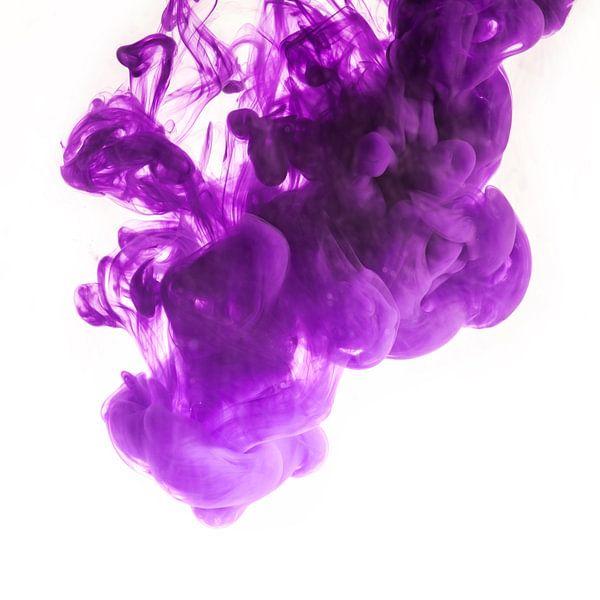 purple van Silvio Schoisswohl