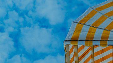 Markies zonnewering, Domburg, Nederland van themovingcloudsphotography