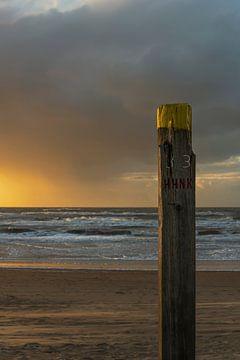 Holzpoller am Strand von Anouschka Hendriks