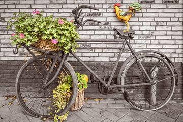 Sepia Fiets van Willem Visser