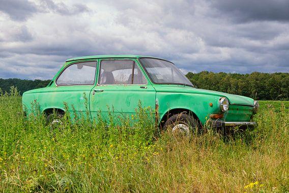 Groene Daf personenauto in een Zomers weideveld
