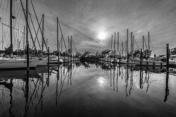 Jachthaven in Dordrecht   van Alvin Aarnoutse