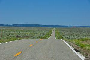 Long road  sur Fred van den Brink