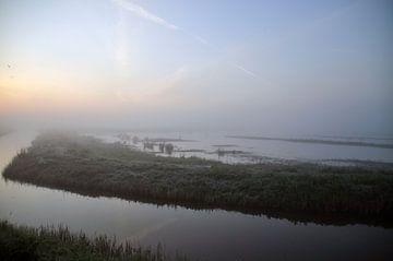 grasland in de mist van Robert Lotman