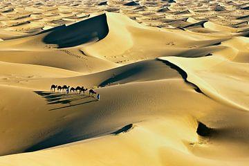 Wüste Sahara, Kamelkarawane und Kameltreiber von Frans Lemmens