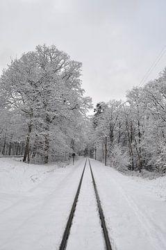 Verschneiter Wald in Göhren, Eisenbahnschienen von GH Foto & Artdesign