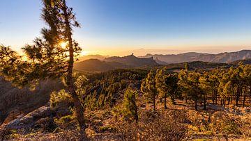 Zonsondergang vanop Pico de las Nieves van Easycopters