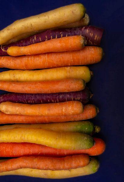 wortels van zippora wiese
