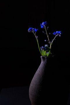 Blaue Vergissmeinnicht von Lucia Leemans