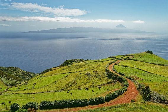 Azoren - Blick zum Vulkan Pico