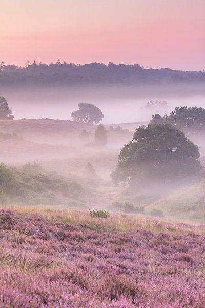 Een mistige ochtend op de heide - verticaal van Monique van Genderen (in2pictures.nl fotografie)
