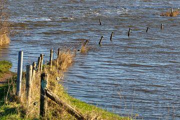 Overstroomde zandweg in een uiterwaard van Fotografiecor .nl