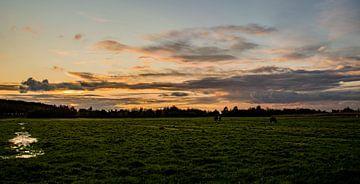Midden Delfland van MK Audio Video Fotografie