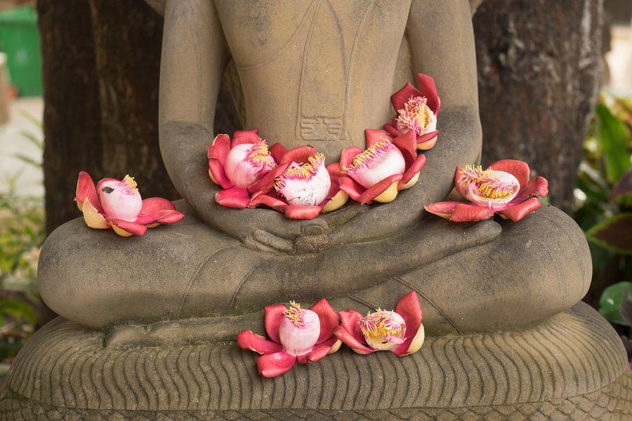 Bloemen op schoot bij Boeddhabeeld