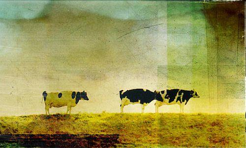 Koeien op de dijk von Koen Edens