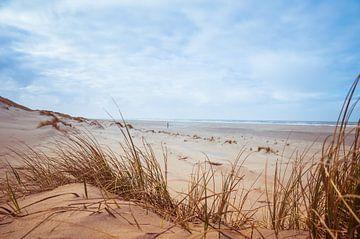 Der Herbst am Strand von Texel! von Brigitte Blaauw