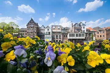 Nederland op zijn mooist van