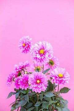 Roze Bloemen van Patrycja Polechonska