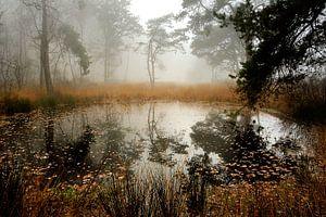Het Zwarte Water van Willem van Leuveren Fotografie