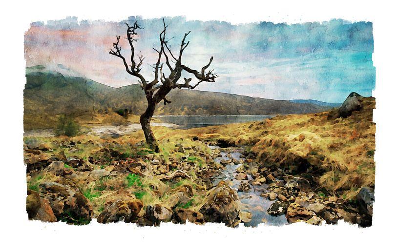 Aquarel van een solitaire boom in Schotland van Peter Bolman