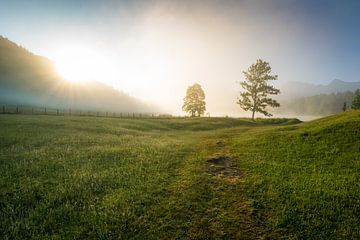 Zomermorgen in Karwendel van Martin Wasilewski