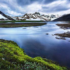 IJslands landschap met water, bergen en mos van Yvette Baur