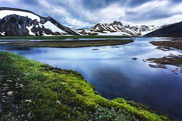 mousse d'Islande sur Yvette Baur