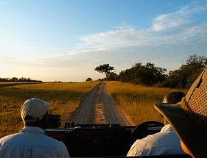 Safari: Jeep rijdt door wildpark in Zuid-Afrika
