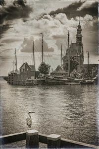 Port de Hoorn sur