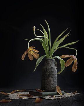 Kultivierte Tulpen von Anoeska van Slegtenhorst