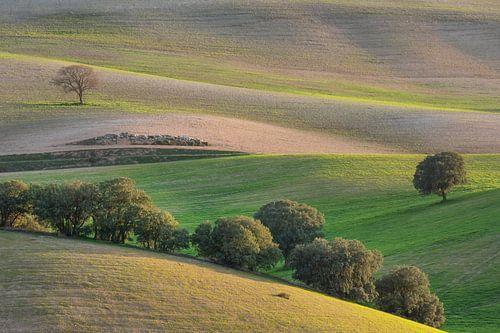 Het Toscane van Andalusië