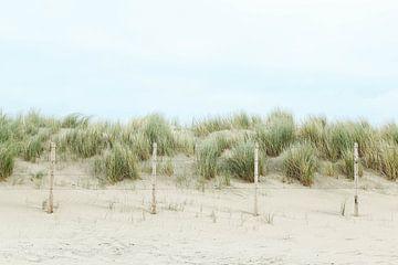 Dunes silencieuses à Kijkduin sur Leen Van de Sande