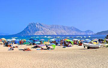 De grote berg Isola Tavolara vanaf een strand op Sardinie, Italie van Maurits Simons