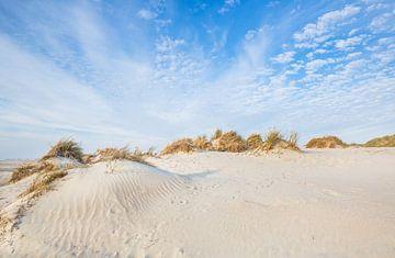 Norderney  Dünen - Landschaft von Ursula Reins