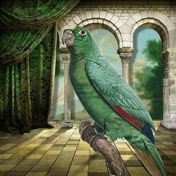 Tales of Parrots von Marja van den Hurk