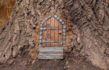 miniatuur huisje gemaakt in een boom