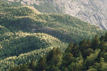 Grüne Hügel von Wahid Fayumzadah