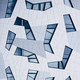 Shapes and Lines  van Een Wasbeer