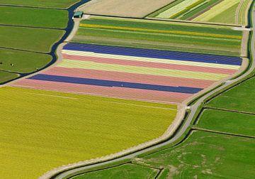 Zwiebelregion mit bunten Feldern von Sky Pictures Fotografie