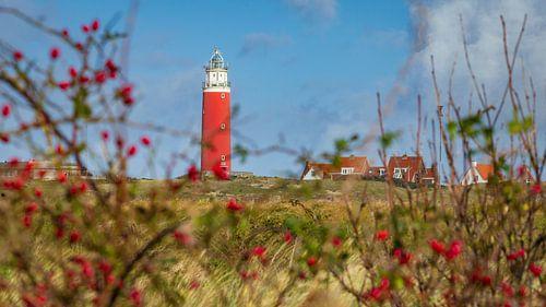 Sfeervol doorkijkje vuurtoren Texel door rode bessen