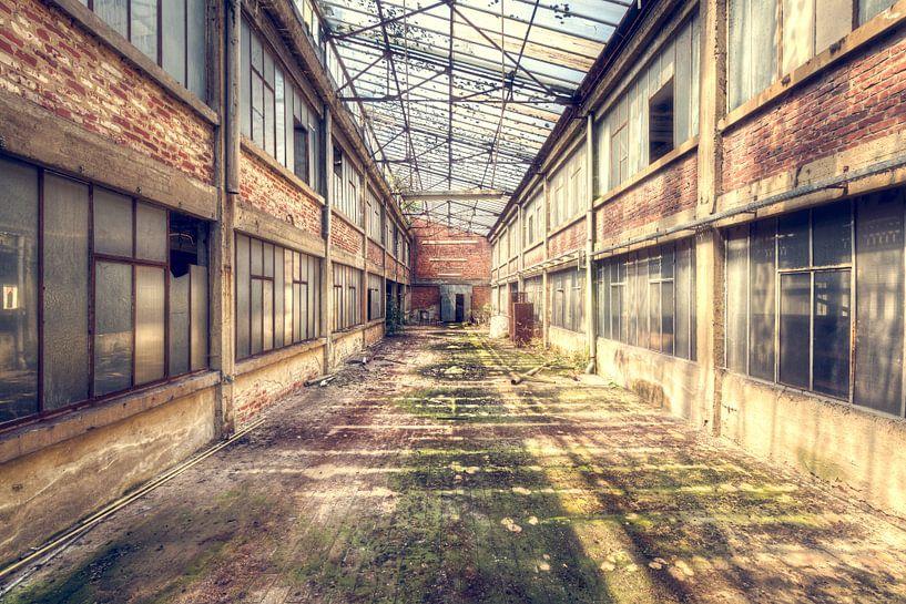 Symmetrischer Korridor im Zerfall. von Roman Robroek