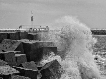 Sturm im Haben von Dirk van der Plas