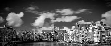 Panorama, Spaarne en Grote of Sint-Bavo kerk 01 van Arjen Schippers