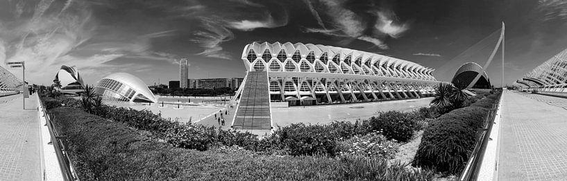 Valencia - Ciudad de las Artes y las Ciencias van Frank Herrmann