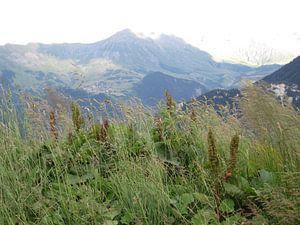 Mountain scenery French Alps van