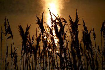 Abend an der Ostsee von Thomas Jäger