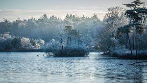 Winterwonderland van Diane van Veen